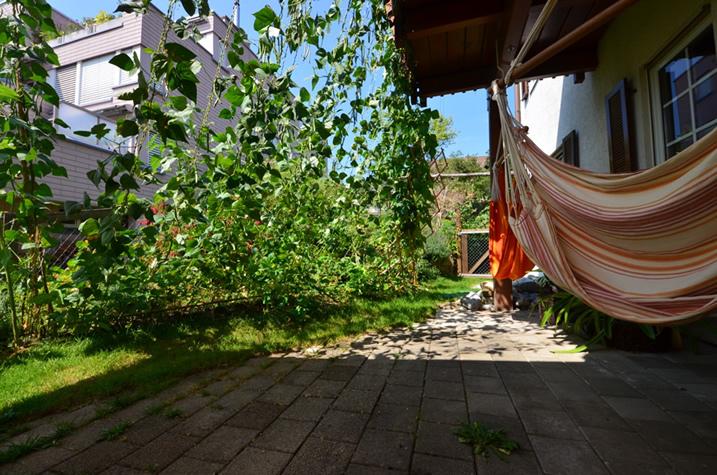 Originelle Gartenplanung Bild 2: Sichtschutz mit Bohnen