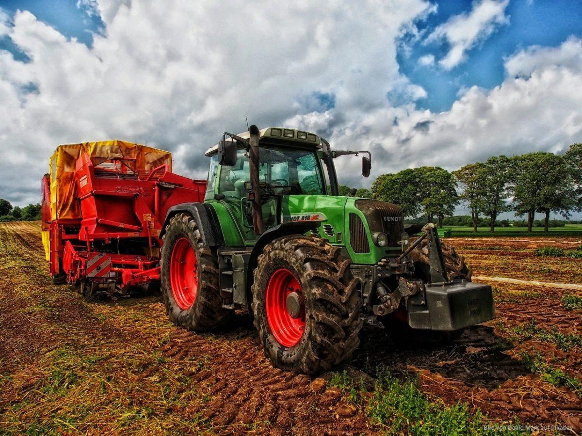 Landwirtschaft: Tieren, Land und Buchhaltung